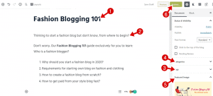 fashion blogging 101