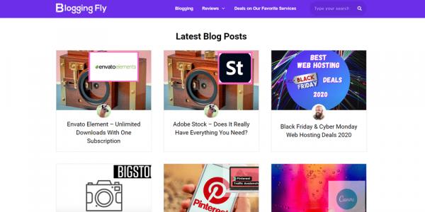 Blogging Fly
