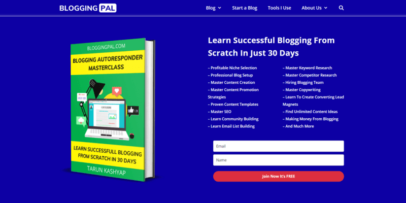 website examples blogging pal