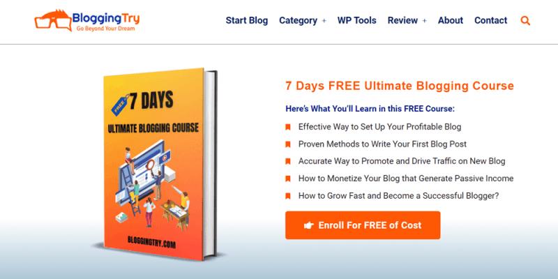 website examples bloggingtry